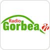 Tune In Radio Gorbea