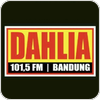 Tune In Dahlia 101.5 FM Bandung