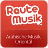 Tune In RauteMusik.FM Oriental