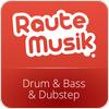 Tune In RauteMusik.FM Drumstep
