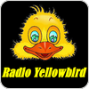 Tune In Radio Yellowbird