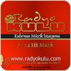 Tune In Radyo Kulu