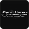 Tune In Radio Usora Dijaspora - Folk