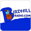 Tune In Birdhill Radio